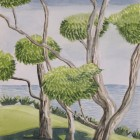 """""""Gum Trees in Mollymuck""""  Watercolor on Paper"""
